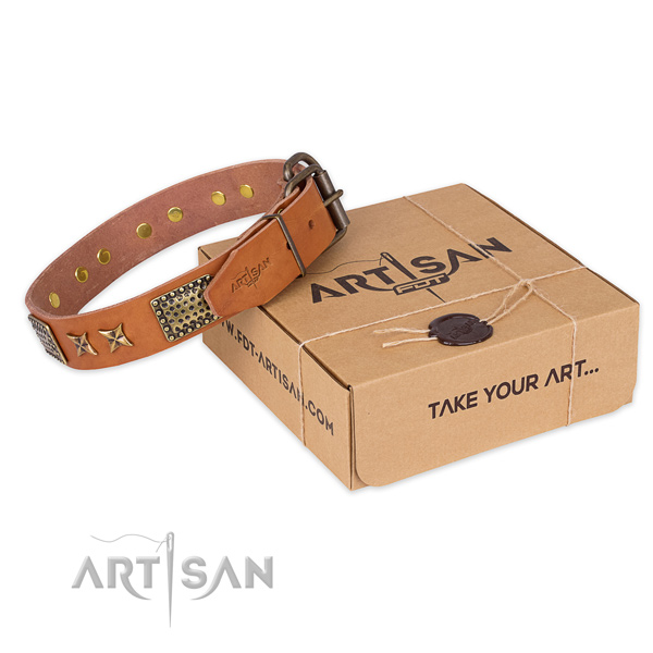 Strong buckle on full grain leather collar for your handsome four-legged friend