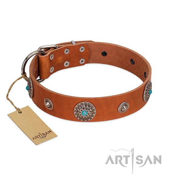 Quality full grain leather dog collar created for your four-legged friend