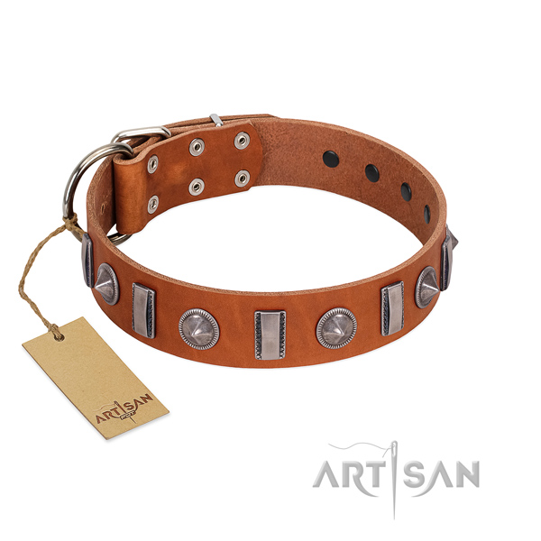 Soft genuine leather dog collar with studs for stylish walking