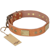 """The Middle Ages"" FDT Artisan Handcrafted Tan Leather dog Collar"