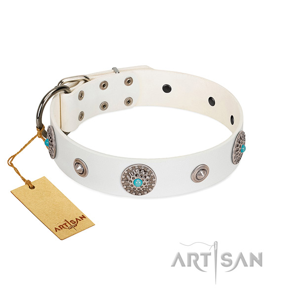 Soft to touch full grain leather dog collar created for your canine
