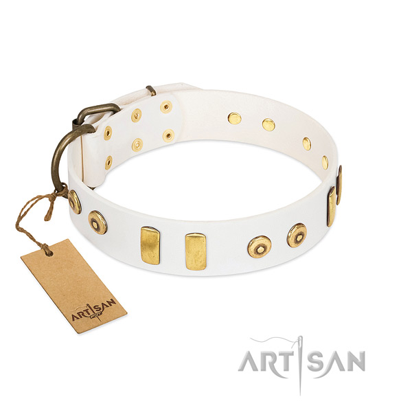 Leather dog collar with trendy studs for walking