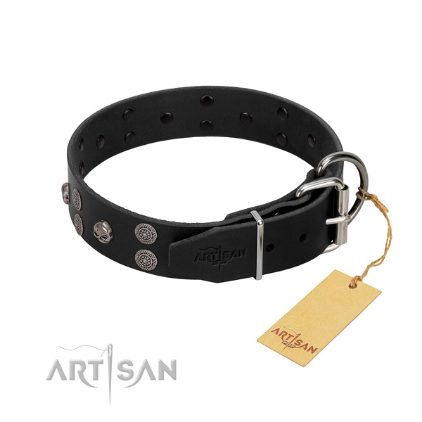 Top notch full grain leather dog collar with decorations for walking