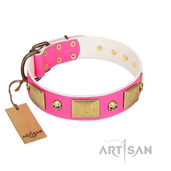 Reliable full grain natural leather collar with rust resistant decorations for your canine