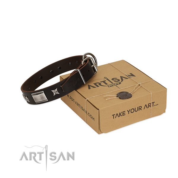 Stylish design collar of full grain natural leather for your attractive canine