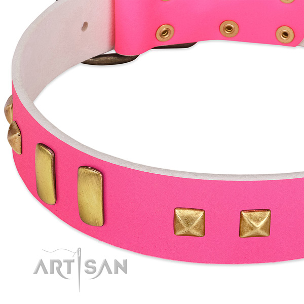Easy wearing genuine leather collar for your attractive doggie