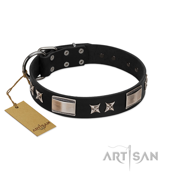Significant dog collar of natural leather