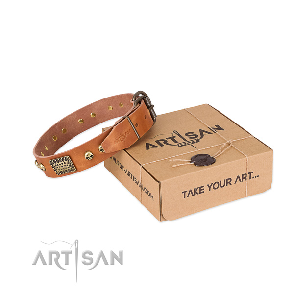 Reliable adornments on dog collar for daily walking
