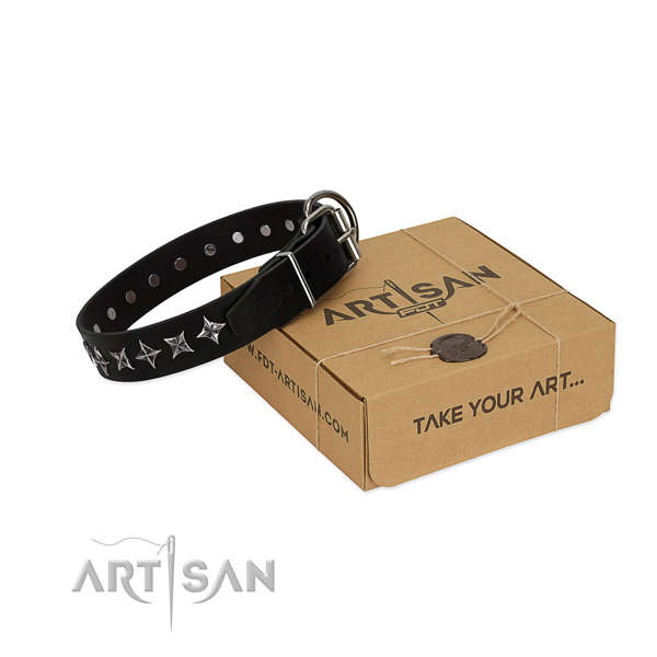 Easy wearing dog collar of reliable full grain leather with adornments