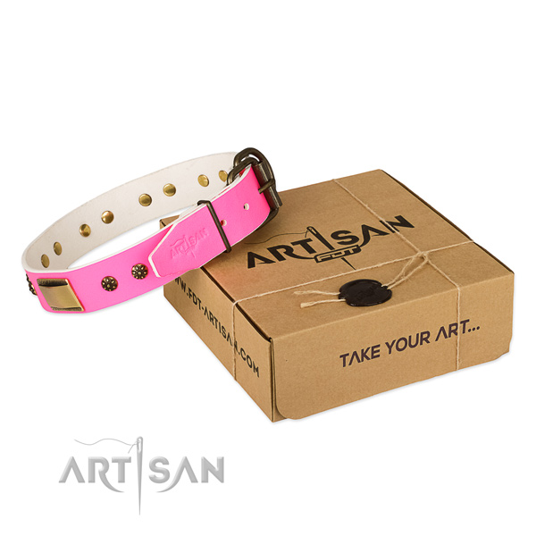 Studded natural genuine leather collar for your beautiful canine