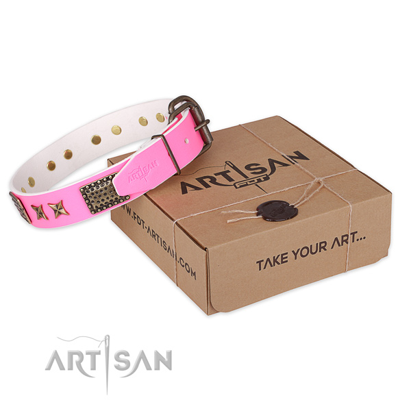Durable traditional buckle on leather collar for your stylish pet