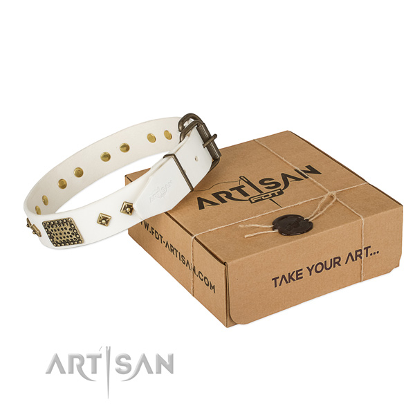 Awesome genuine leather collar for your stylish canine