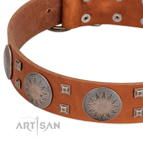 Everyday use quality full grain genuine leather dog collar