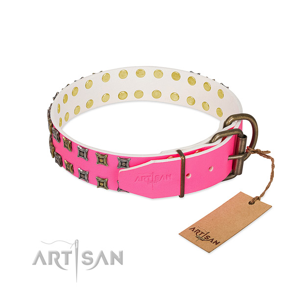 Full grain natural leather collar with fashionable embellishments for your doggie