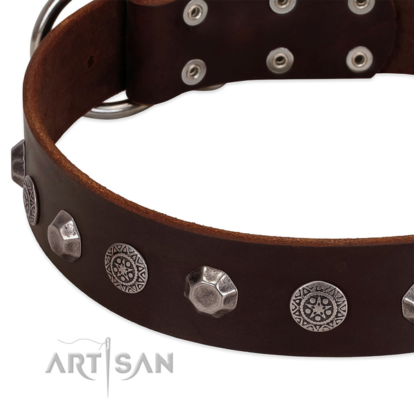 Adorned full grain natural leather dog collar for fancy walking