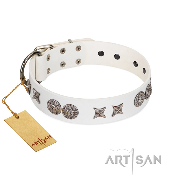 Genuine leather collar with incredible adornments for your pet