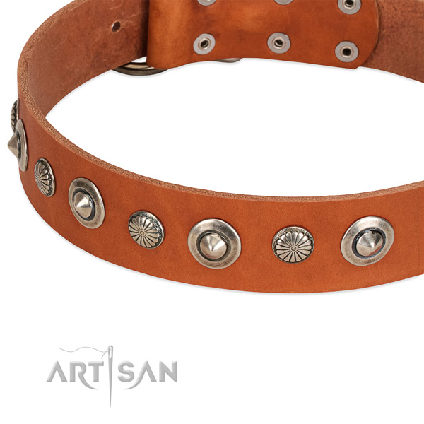 Remarkable adorned dog collar of fine quality natural leather