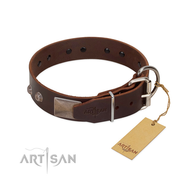 Impressive genuine leather dog collar for stylish walking your four-legged friend