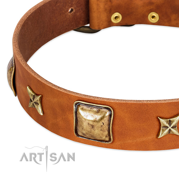Strong adornments on full grain genuine leather dog collar for your four-legged friend