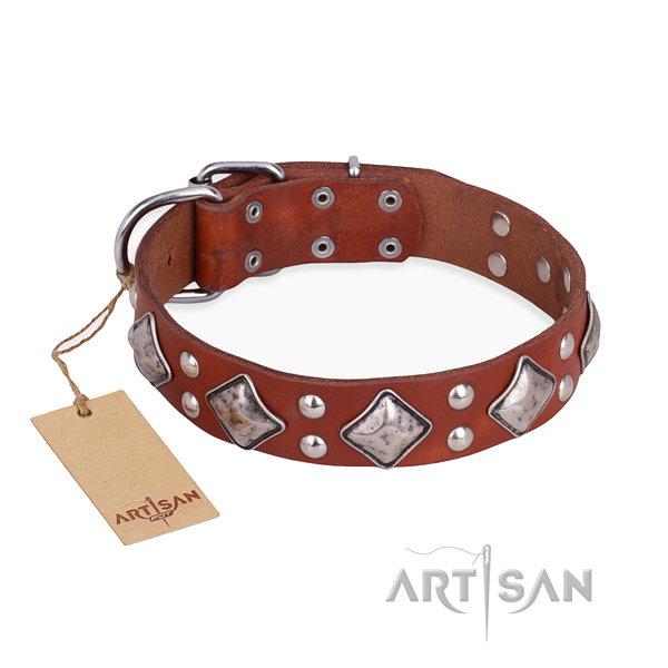 Fancy walking embellished dog collar with corrosion proof fittings