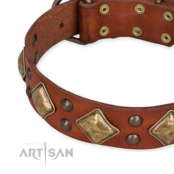 Full grain leather collar with rust resistant buckle for your lovely canine