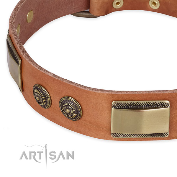 Strong embellishments on full grain natural leather dog collar for your dog