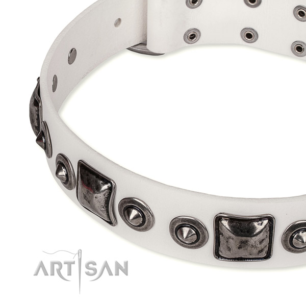 Top rate full grain natural leather dog collar handcrafted for your attractive pet