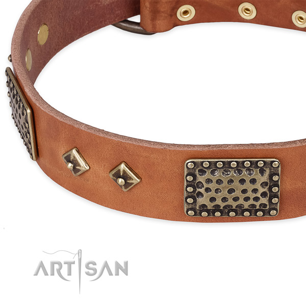 Strong decorations on natural leather dog collar for your four-legged friend
