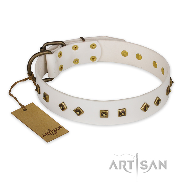 Studded full grain natural leather dog collar with durable hardware