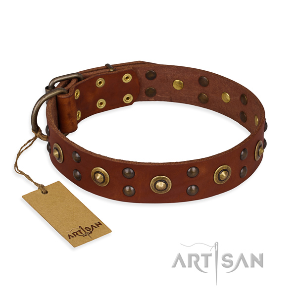 Amazing genuine leather dog collar with reliable buckle