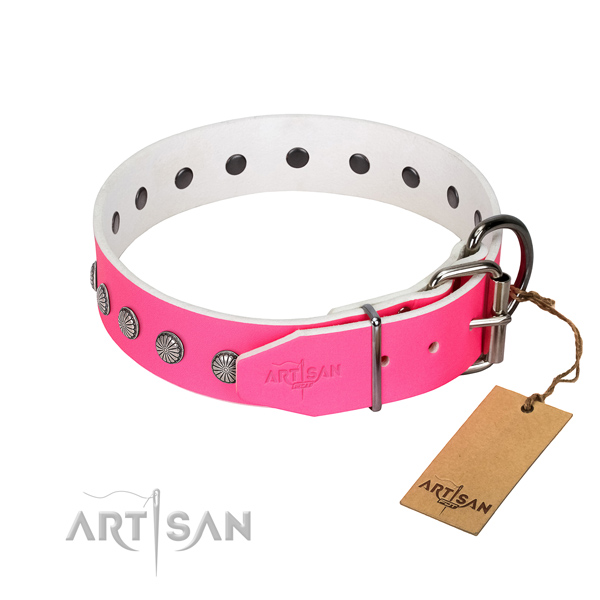 Best quality leather dog collar with embellishments for your handsome pet