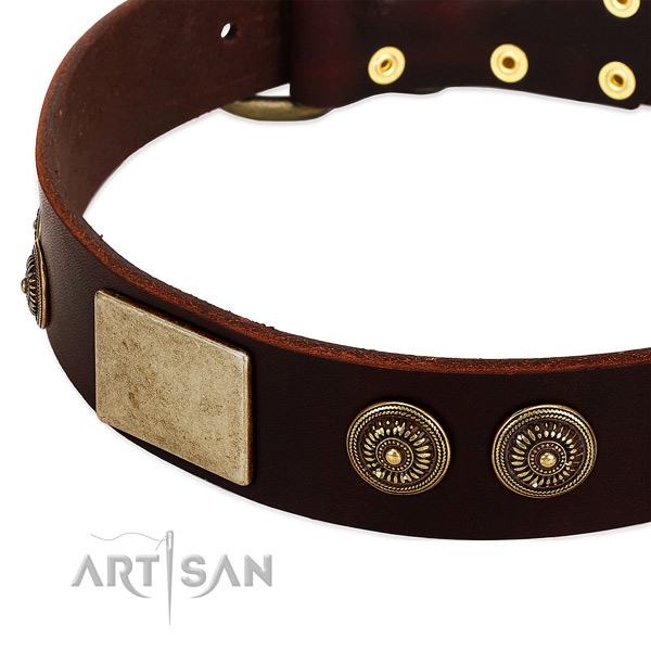 Durable decorations on full grain natural leather dog collar for your four-legged friend