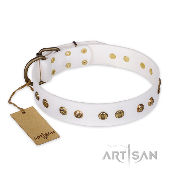 Embellished leather dog collar with corrosion proof D-ring