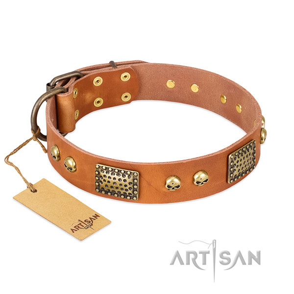 Adjustable full grain leather dog collar for stylish walking your pet