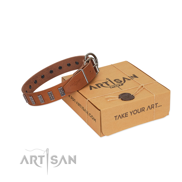 Reliable buckle on leather collar for fancy walking your pet