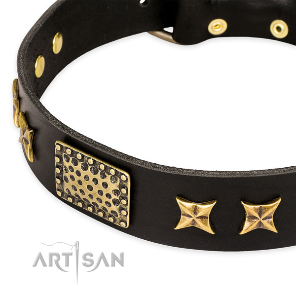 Full grain natural leather collar with rust-proof traditional buckle for your attractive doggie