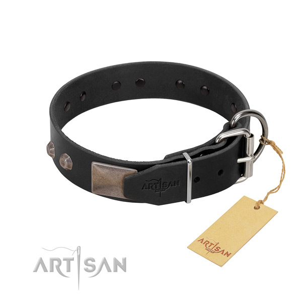 Extraordinary full grain leather dog collar for daily walking your four-legged friend