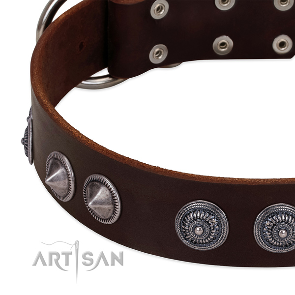 Top rate full grain genuine leather dog collar with remarkable embellishments