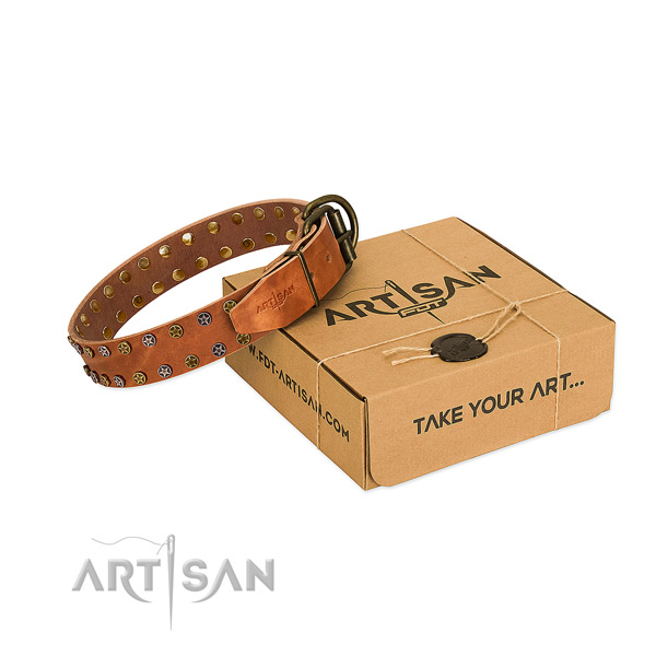 Everyday use top rate full grain genuine leather dog collar with adornments