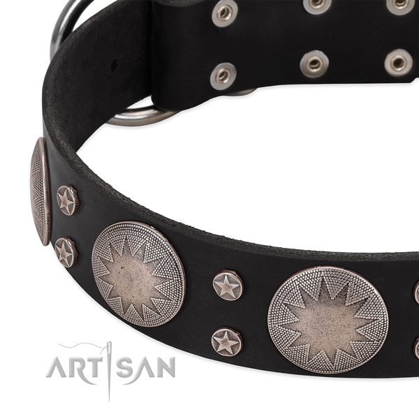 Best quality full grain natural leather dog collar with adornments for your stylish pet