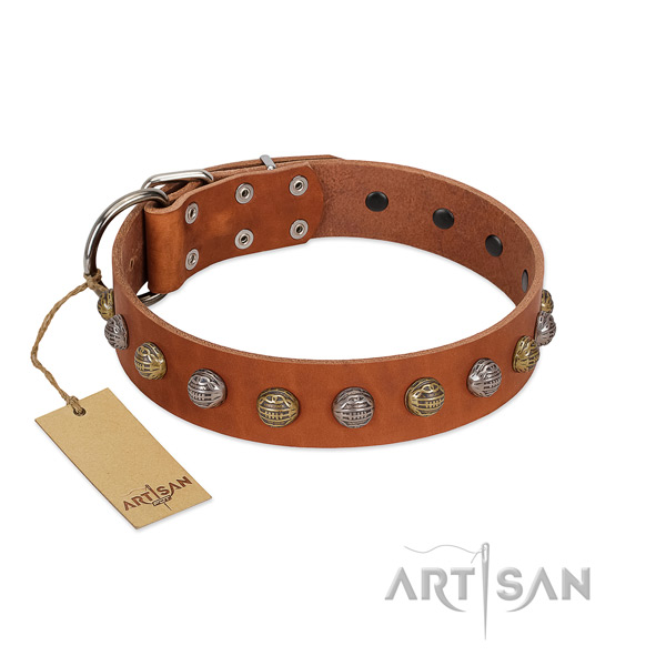 Rust resistant traditional buckle on full grain genuine leather dog collar for everyday walking your pet