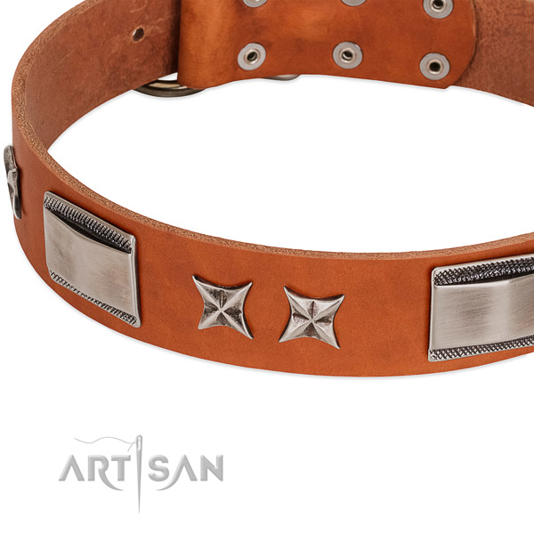 Quality natural leather dog collar with rust-proof fittings