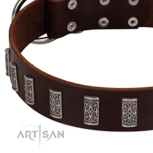Top rate full grain natural leather dog collar handmade for your four-legged friend