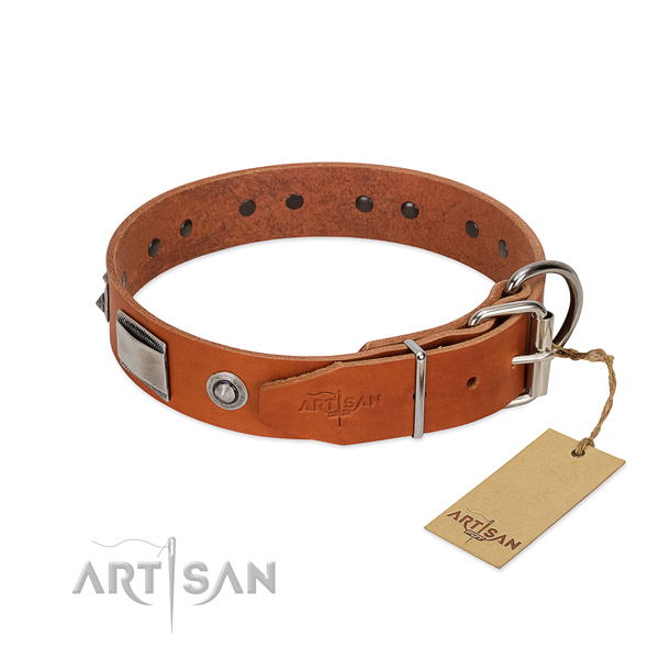 Trendy full grain leather collar with studs for your dog