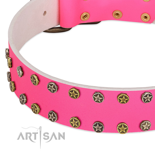 Best quality full grain genuine leather collar with adornments for your dog