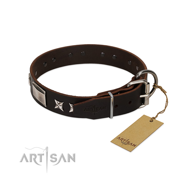 Stylish design collar of leather for your attractive four-legged friend