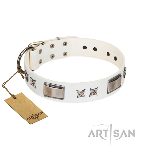 Inimitable dog collar of full grain genuine leather