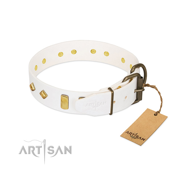 Best quality natural leather dog collar with rust resistant traditional buckle