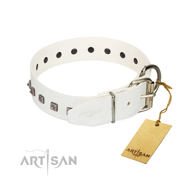 Best quality natural leather dog collar with adornments for walking