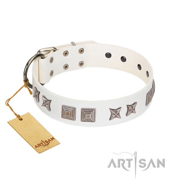 Natural leather dog collar with fashionable decorations handcrafted doggie